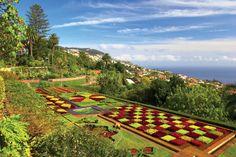 Explore maderia with HF Holidays