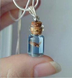 Adorable tiny things. Miniatures, turtles in a bottle, not a real live one, don't worry Lol.