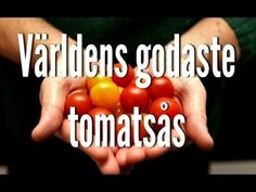 8 tips för dig som har mycket tomater | Matgeek What to do with the overload of tomatoes. Great ideas!