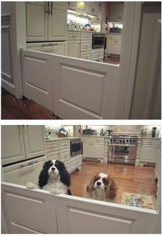Pocket doors as dog/baby gate.  LOVE it.  The original poster wrote: My sister installed built-in dog doors in her new home!