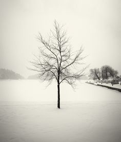 Hakan Strand Photographer
