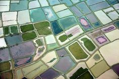 erica tanov / aerial view of rice fields in indonensia (makassar, sulawasi)