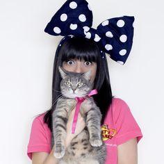 Ecco Kiki, la gatta della blogger @lauracomolli : lei è una dei nuovi amici di Pet's Planet. #cat #cats #gatto #gatti #petfood #petsplanet #food #alimentazione #pet #pets