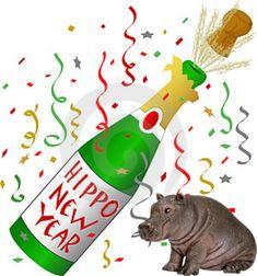 As the new year approaches - Happy New Year and Happy Holidays to All. Cartoon Hippo, Fiona The Hippo, Hippopotamus For Christmas, Happy New Year 2019, Funny Happy, Funny Cards, Cover Photos, Polar Bear, Happy Holidays
