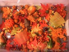 Fall Sensory Bin from growingupourstyle.blogspot.com