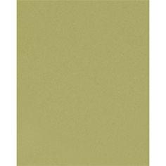 Moss - Paper Source