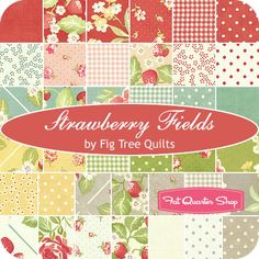 color story / Strawberry Fields Charm Pack Fig Tree Quilts for Moda Fabrics - Fat Quarter Sho on imgfave Bird Quilt, Tree Quilt, Baby Girl Quilts, Girls Quilts, Fabric Yarn, Quilting Fabric, Fabric Crafts, Twin Quilt Size, Pinwheel Quilt