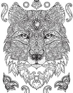 1006 Best Adult Coloring Pages Animals Images In 2019 Coloring