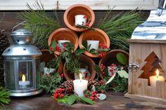 ...a quiet life...: garden advent dec 21st~winter solstice, light the way
