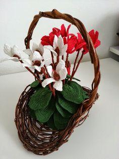 Uno dei pochi fiori che anche nella stagione fredda colora i nostri boschi e le nostre case. L'ho ricreato all'uncinetto così posso a...