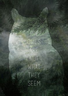 The Owls are not what they appear #art Not a movie but damn that's one good tv show. #twinpeaks