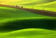 Spring time... by Krzysztof Browko