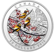 2015 1 oz Proof Canadian Silver Winter Freeze Coin from JM Bullion™ Mint Coins, Silver Coins, Canadian Coins, Coin Display, Funny Tattoos, Rare Coins, Half Dollar, Coin Collecting, 1 Oz