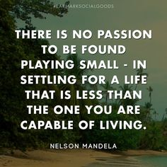 There is no passion to be found playing small -…
