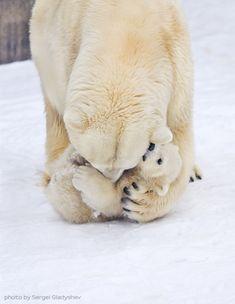 Tummy kisses!!