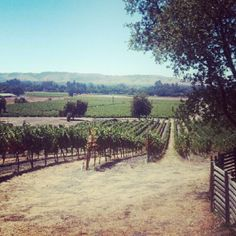 """Tamara says: """"Cool cave, beautiful outdoor patio, great tours and of course delicious wines."""" - we went here as a team in July 2013 San Francisco Sights, Sonoma Wineries, Cave Tours, Valley Girls, California Dreamin', Napa Valley, Wine Country, A Team, Four Square"""