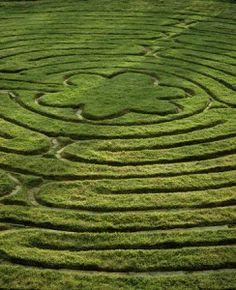 labyrinth Oklahoma, Lakeside Inn, Labyrinth Maze, Parks, Hot Springs Arkansas, Walking Meditation, Crop Circles, Web Design, Design Ideas