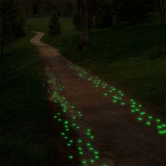 Great idea - paint pebbles with glow in the dark paint to mark your walkway