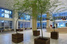 Hospital Nossa Senhora de Lourdes | Galeria da Arquitetura
