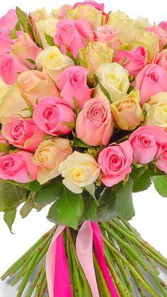 Beautiful Flowers Wallpapers, Beautiful Flowers Garden, Exotic Flowers, Amazing Flowers, Beautiful Roses, Pretty Flowers, Silk Flowers, Rose Flower Arrangements, Rose Flower Wallpaper