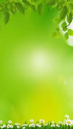 Fresh green grass background material h5 Green Grass Background, Blur Photo Background, Dslr Background Images, Background Images Wallpapers, Geometric Background, Background For Photography, Photo Backgrounds, Green Nature Wallpaper, Flowery Wallpaper