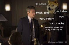 Sherlock doge meme <----- wow show. So Sherlock. Much awesome. Very Benedict and Martin.<<< you better shave that thing or so help me XD Sherlock Fandom, Sherlock Series 3, Sherlock Season 3, Sherlock Holmes Bbc, Watson Sherlock, Sherlock John, Supernatural Fandom, Martin Freeman, The Empty Hearse