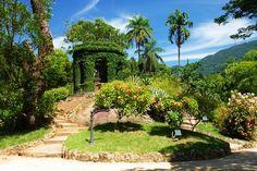 Rio de Janeiro(Jardim Botânico)
