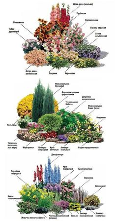 Flower Garden Plans, Garden Design Plans, Backyard Garden Design, Small Garden Landscape, Landscape Plans, Landscape Design, Landscape Architecture, Deco Restaurant, Rustic Gardens