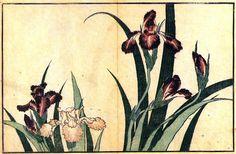 Katsushika Hokusai - Irises