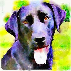 Chocolate Labrador Watercolor Print by ThisMomLovesDisney on Etsy, $7.00