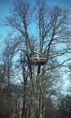 Treehouse in Västerås, Sweden
