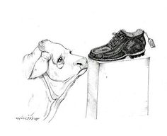 This breaks my heart... Looking at the shoe thinking, this is what my life is worth to these maniacs?!?!