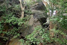 石岡・歴史と自然の街散策(nature and history in Ishioka): 波付岩 石岡市染谷 namitsuki-iwa Someya Ishioka-city