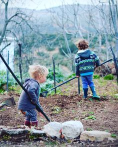 In the UK we had a fig tree in a pot now we have a veggie patch & 3 fig trees!  Read more about the changes we've made on the blog #expat #simplelife #familytravel