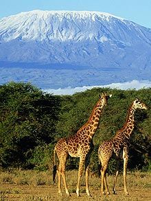 Mount Kilimanjaro, Tanzania- yesyesyes. been planning my trip for like 7 years!