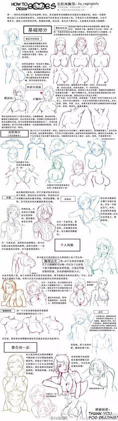 【人体教材】女性人体结构的参考合集~推荐给大家~ -- 原画梦 -- 传送门