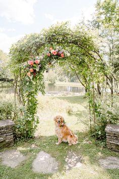 Edson Hill Vermont Wedding Photography / L + N - Jenna Brisson Photography