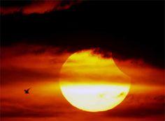 Eclissi Solare, che spettacolo! - Condé Nast Live!