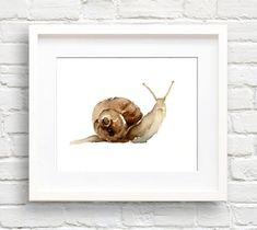 Hey, I found this really awesome Etsy listing at https://www.etsy.com/listing/456017688/watercolor-snail-art-print-wall-decor