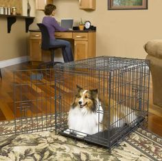 Midwest Select Triple Door Wire Dog Crate Wire Dog Crates, Your Pet, Home Appliances, Pets, Animals, House Appliances, Animales, Animaux, Appliances