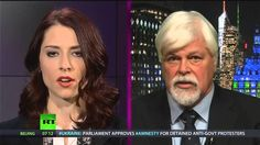 Food Stamp Hypocrites, Whale Wars Breaks the Set, State of the Union Fail Abby Martin, Save A Dog, What Is Hot, State Of The Union, Top News, Animal Rights, Dolphins, Fails, Whale