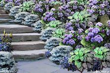 rockery - GardenPuzzle - online garden planning tool