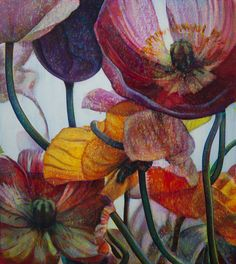 TIM MAGUIRE Oil Painting Flowers, Watercolor Flowers, Watercolour, Botanical Illustration, Illustration Art, Illustrations, Beautiful Drawings, Australian Artists, Abstract Styles