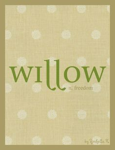 Girl Name: Willow. Meaning: Freedom. Origin: English. http://www.pinterest.com/vintagedaydream/baby-names/