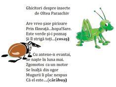 Doamna Fagilor Infant Activities, Teacher Resources, Education, Blog, Floral, Decor, Insects, Kids, Decoration
