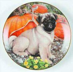 Pug Collectors Plates - $160 (Douglas)