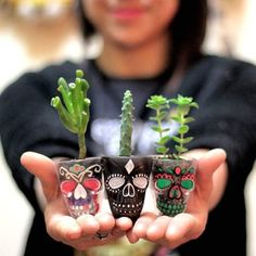 New Succulent Planter Ideas Glass Flower Pots 15 Ideas Painted Flower Pots, Painted Pots, Euphorbia Pulcherrima, Pots D'argile, Skull Decor, Cactus Y Suculentas, Cacti And Succulents, Garden Art, House Plants