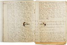 Sotapäiväkirja War diary with hole from bullet or schrapnel Jalkaväkirykmentti 35 Infantry regiment 35 photo credit: Kaisa Rau