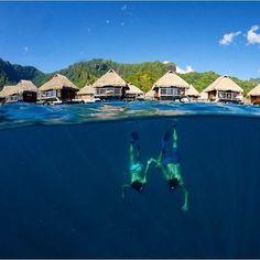 Pearl Resort Bora Bora French Polynesia @TimMckenna - like it if you believe our #earthisstunning   --------------------------- #earth #earthisbeautiful #earthpix #earthphoto #earthlover #earthescape #earthcapture #photograph #photooftheday