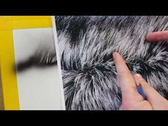 The Airbrush Academy Guide to Airbrushing Realistic Fur Painting Fur, Air Brush Painting, Painting Tips, Custom Paint Motorcycle, Wildlife Paintings, Airbrush Art, Drawing Techniques, Abstract, Dremel Tool